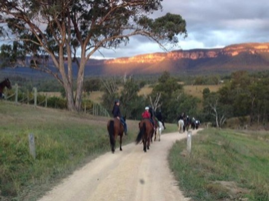 Learn to ride on your own horse or with one of ours, and take your horse on trail rides through the valley.