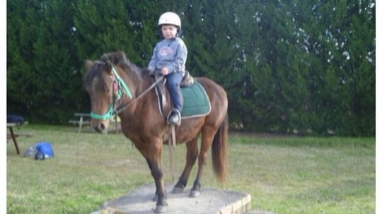 Euroka Homestead offers pony rides for children under 8 years of age.